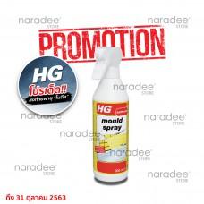 HG mould spray 500 ml.
